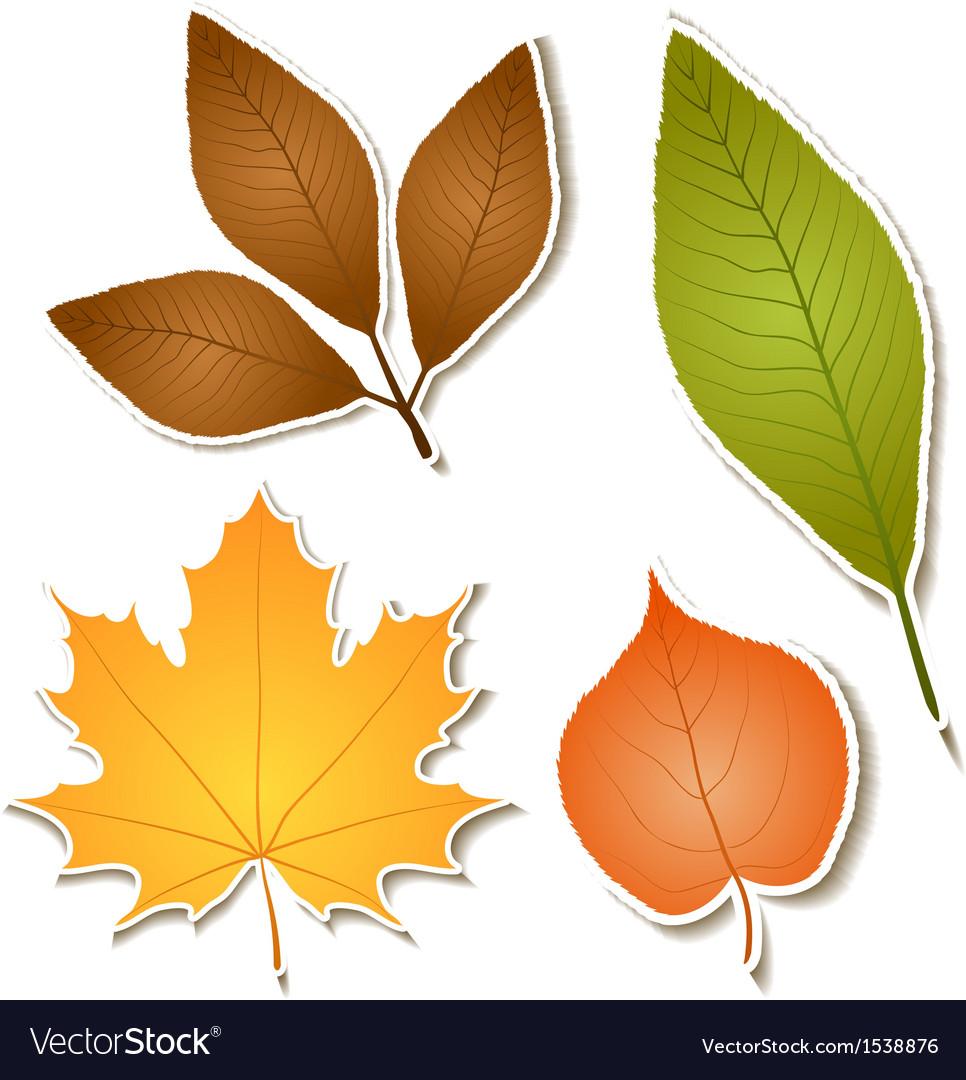Autumn leaf sticker set