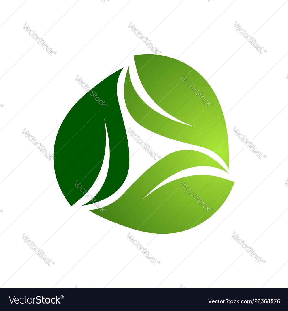 Three abstract green light dark leaf logo template