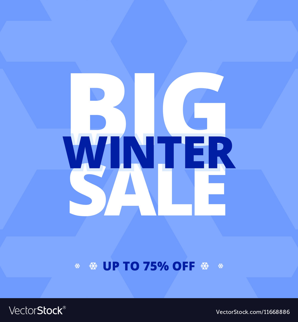 Big winter sale banner vector image
