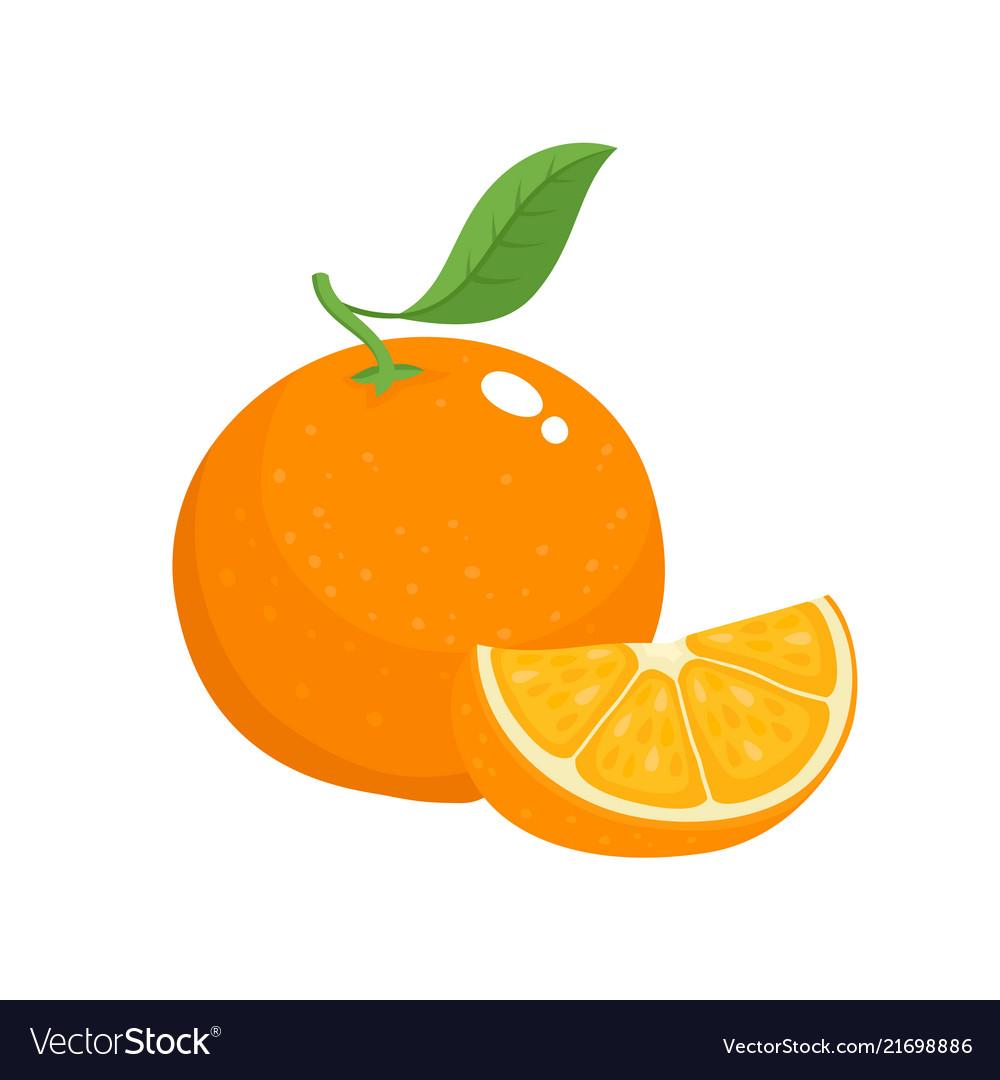 Bright set of colorful juicy orange