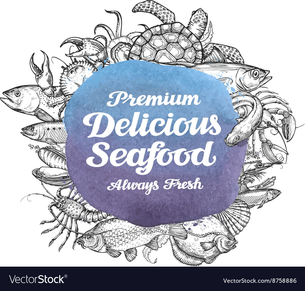 Seafood hand drawn sketches of food