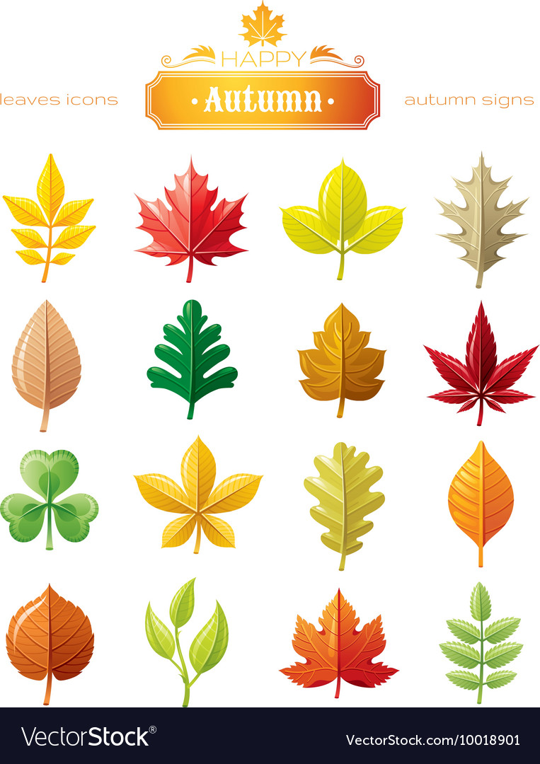 Leaves icon set for natural seasonal