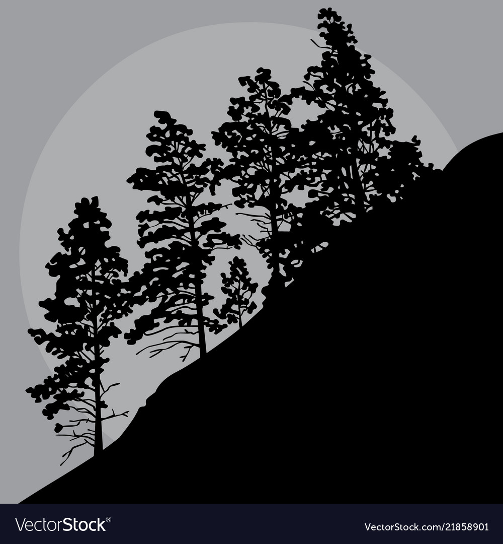 Painted Silhouette Trees On A Mountainside In A Vector Image