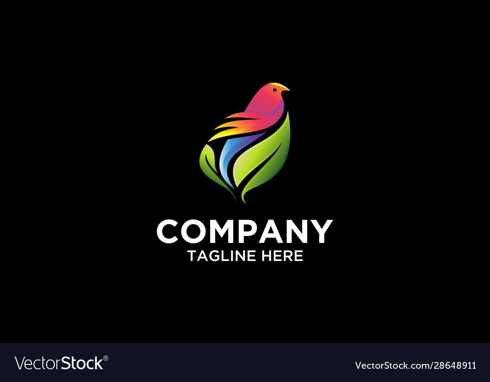 Bird leaf colorful logo vector image