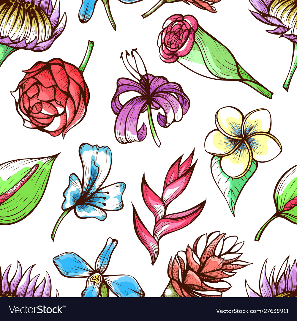 Tropical flowers hand drawn color seamless