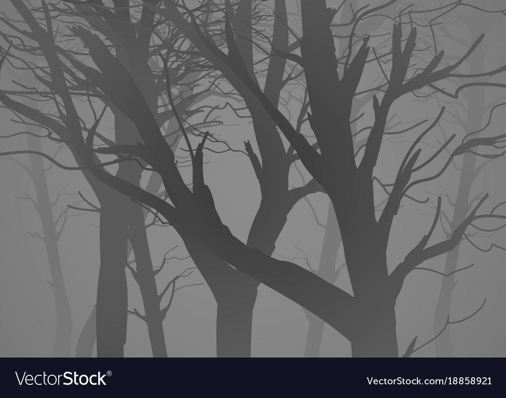 Misty Dark Woods Royalty Free Vector Image