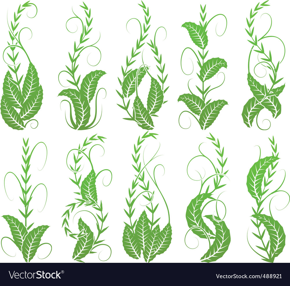 Vertical foliage