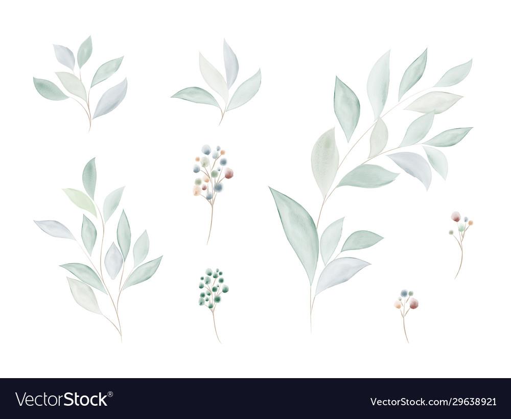 Watercolor set green leaf