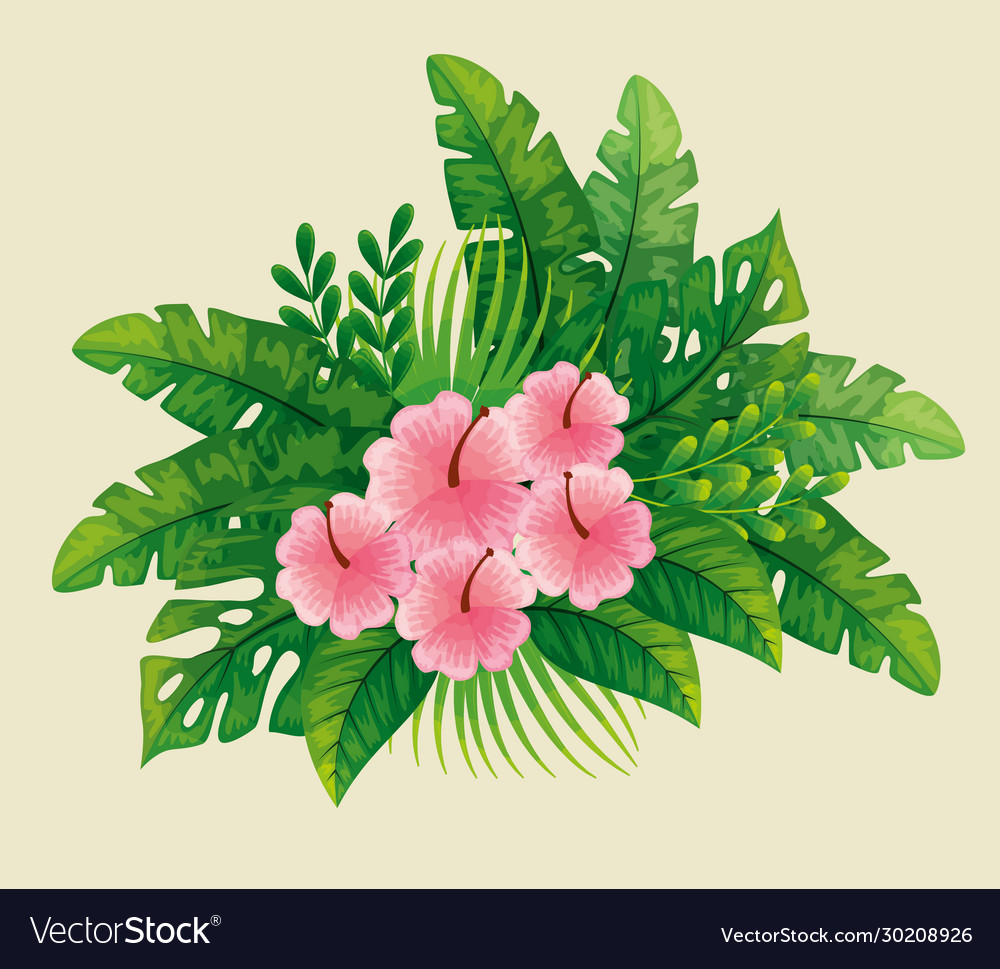 Cute Flowers Pink Color With Tropical Leafs Vector Image
