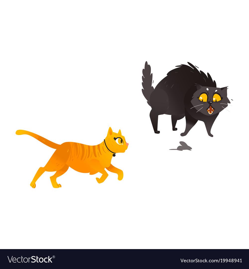 Cartoon cat animals set isolated vector image