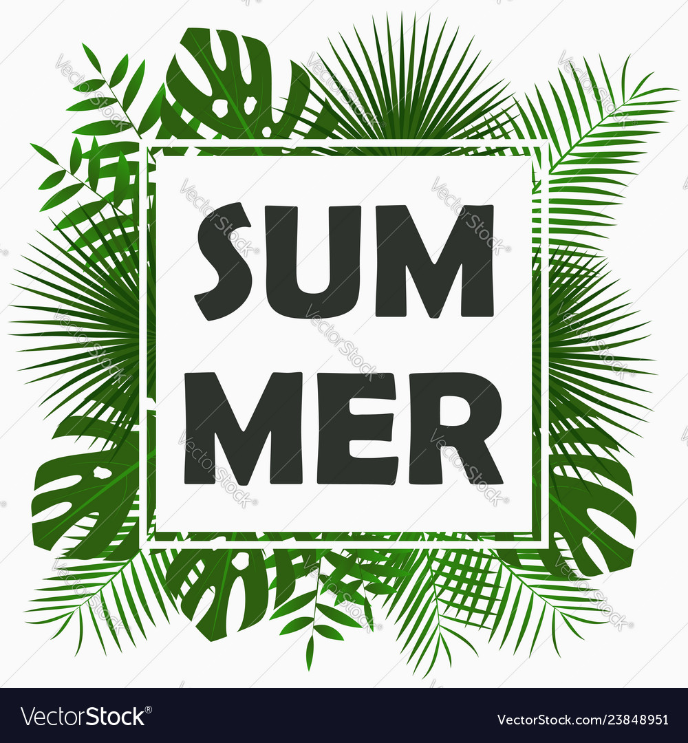 Summer card design with - tropical palm leaves