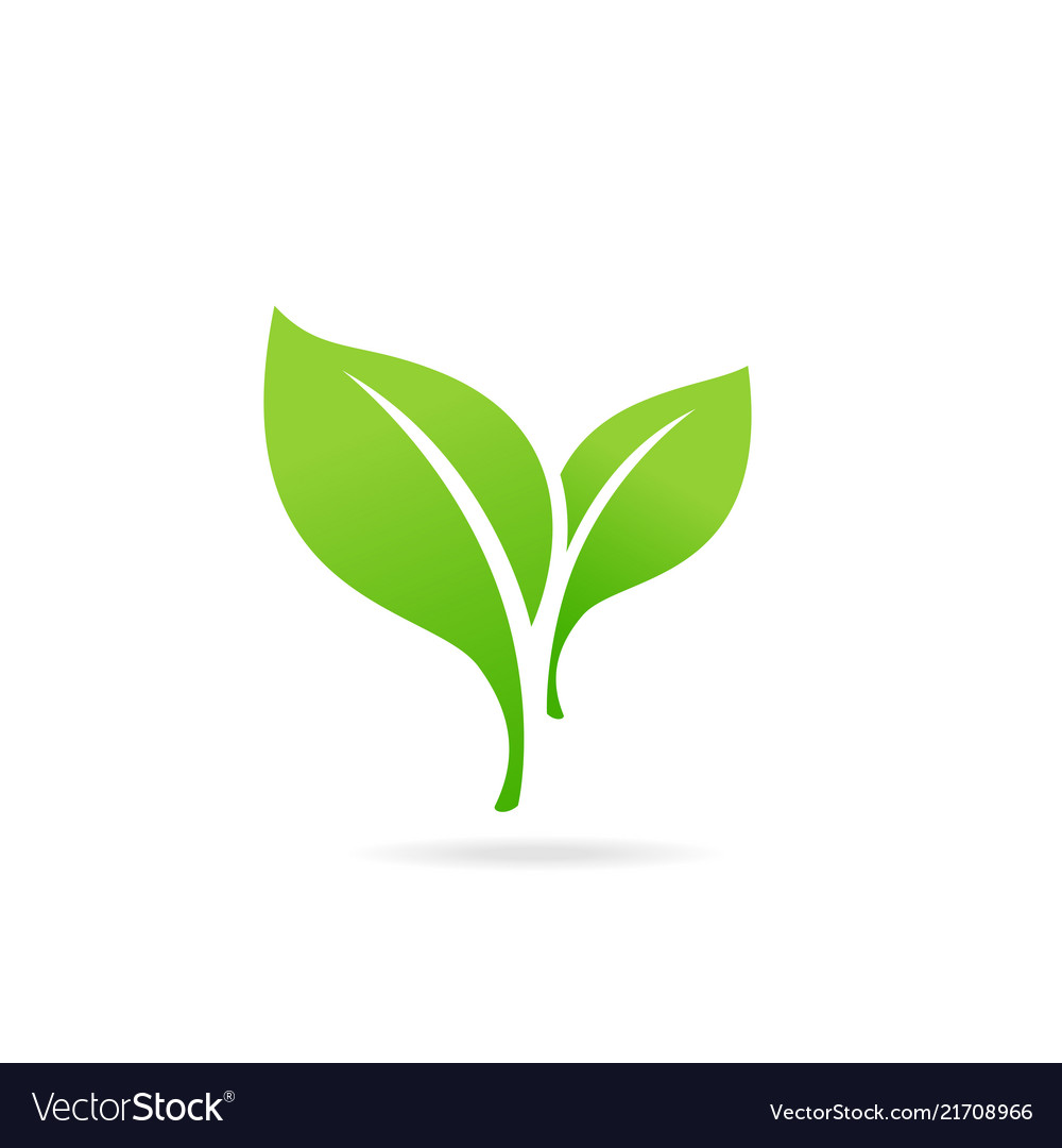 Element for eco and bio logo green leaf icon