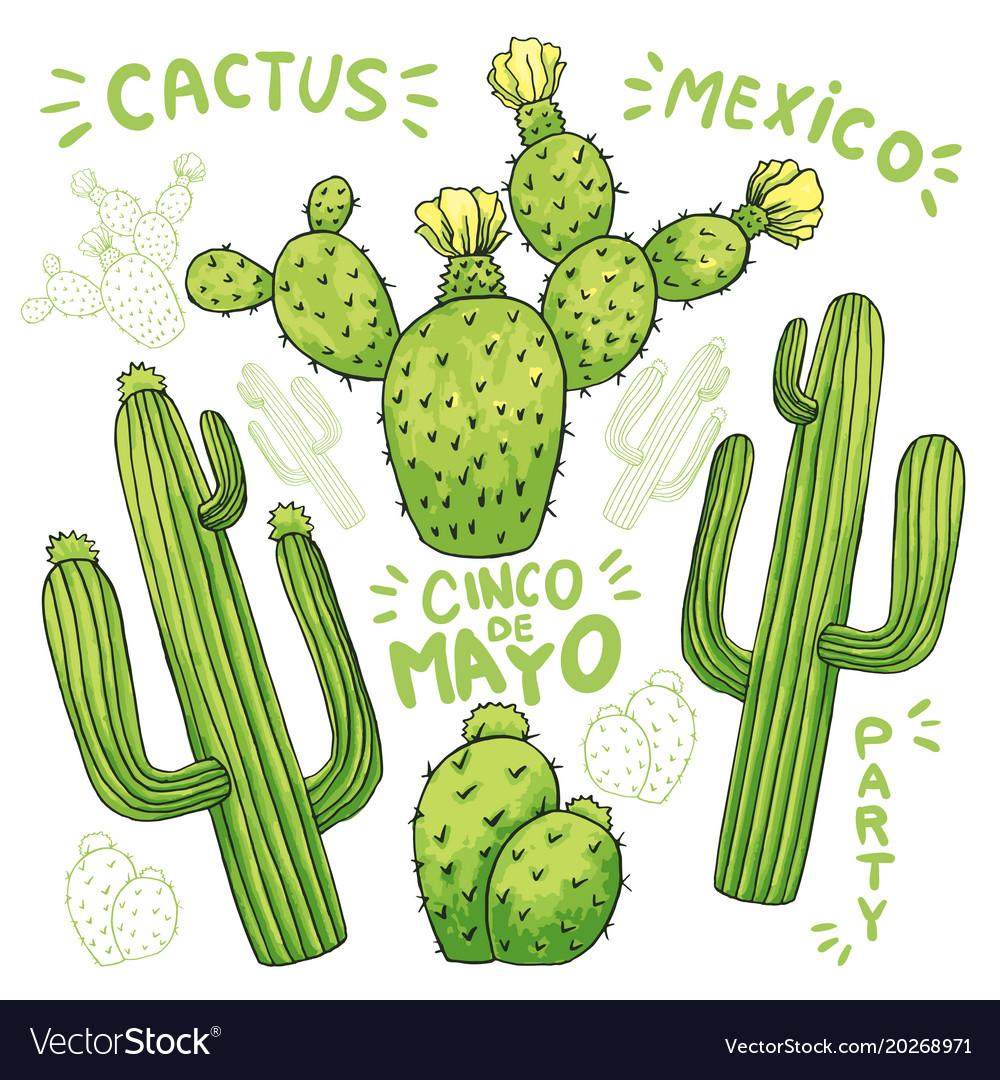 Set of edible cactus or cacti for cinco de mayo