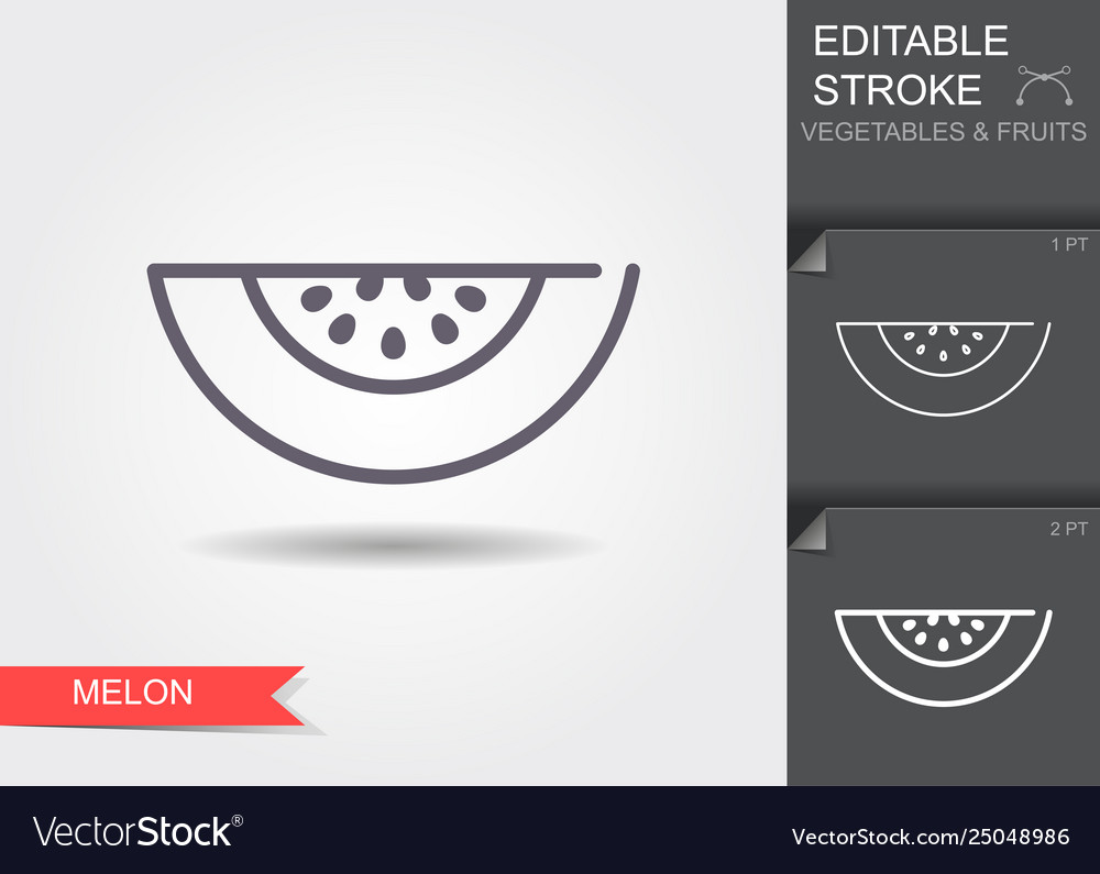 Melon line icon with shadow