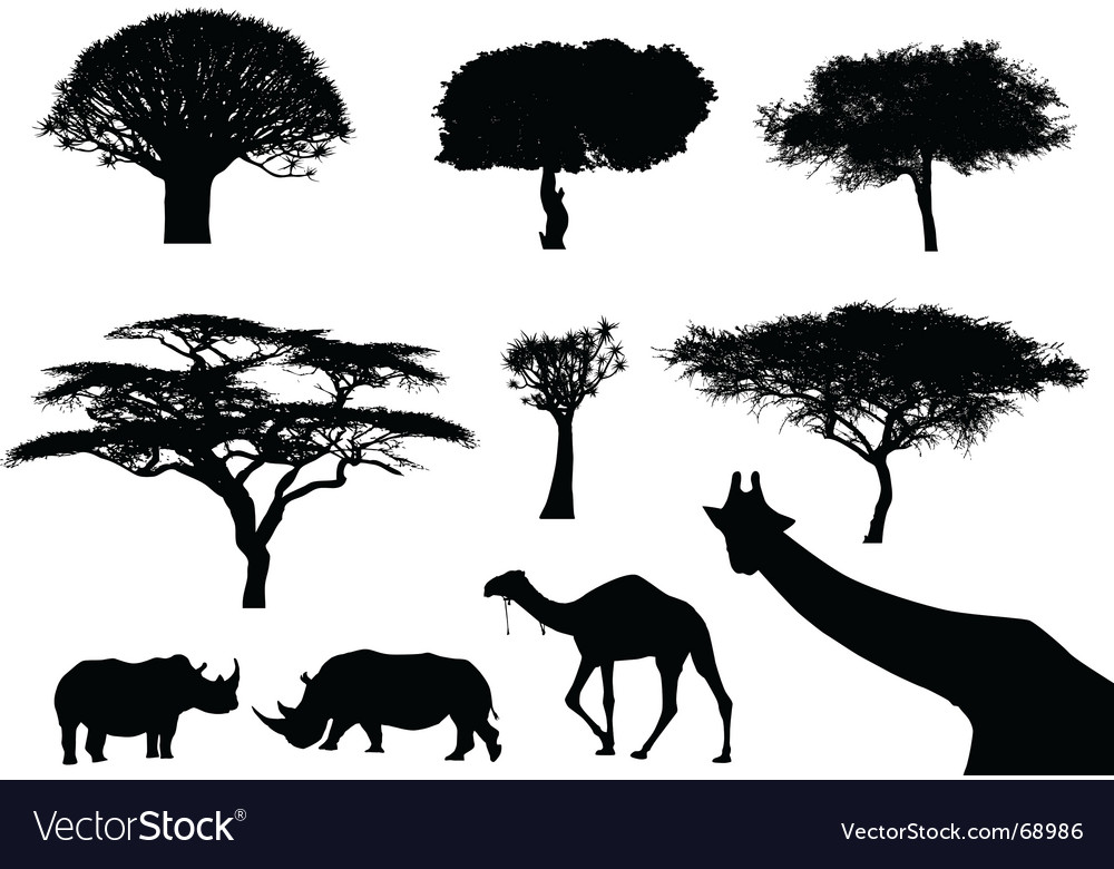 Trees and animals