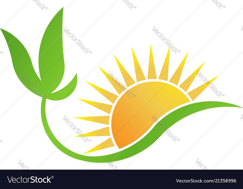 Green bio-solar energy plant and sun logo