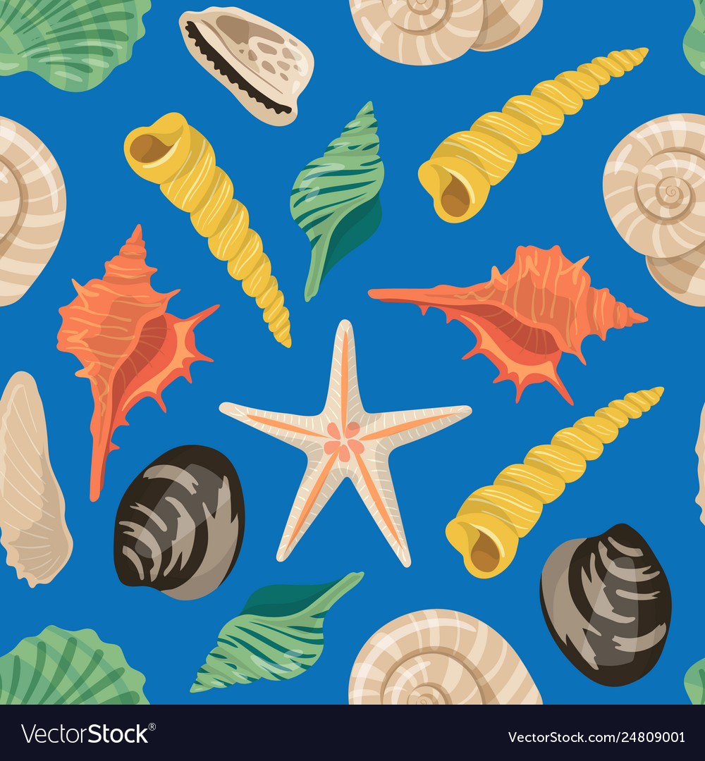 Cartoon sea shells pattern or background