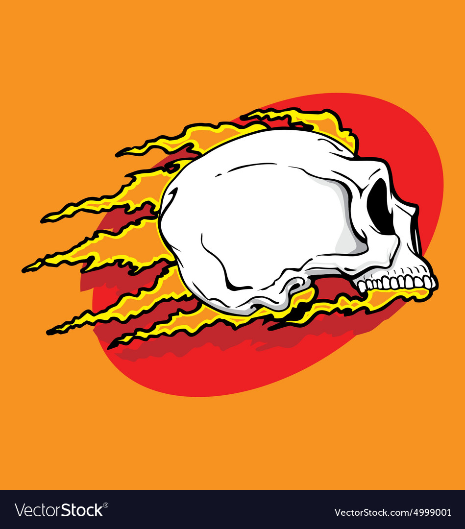 Skull badge vector image