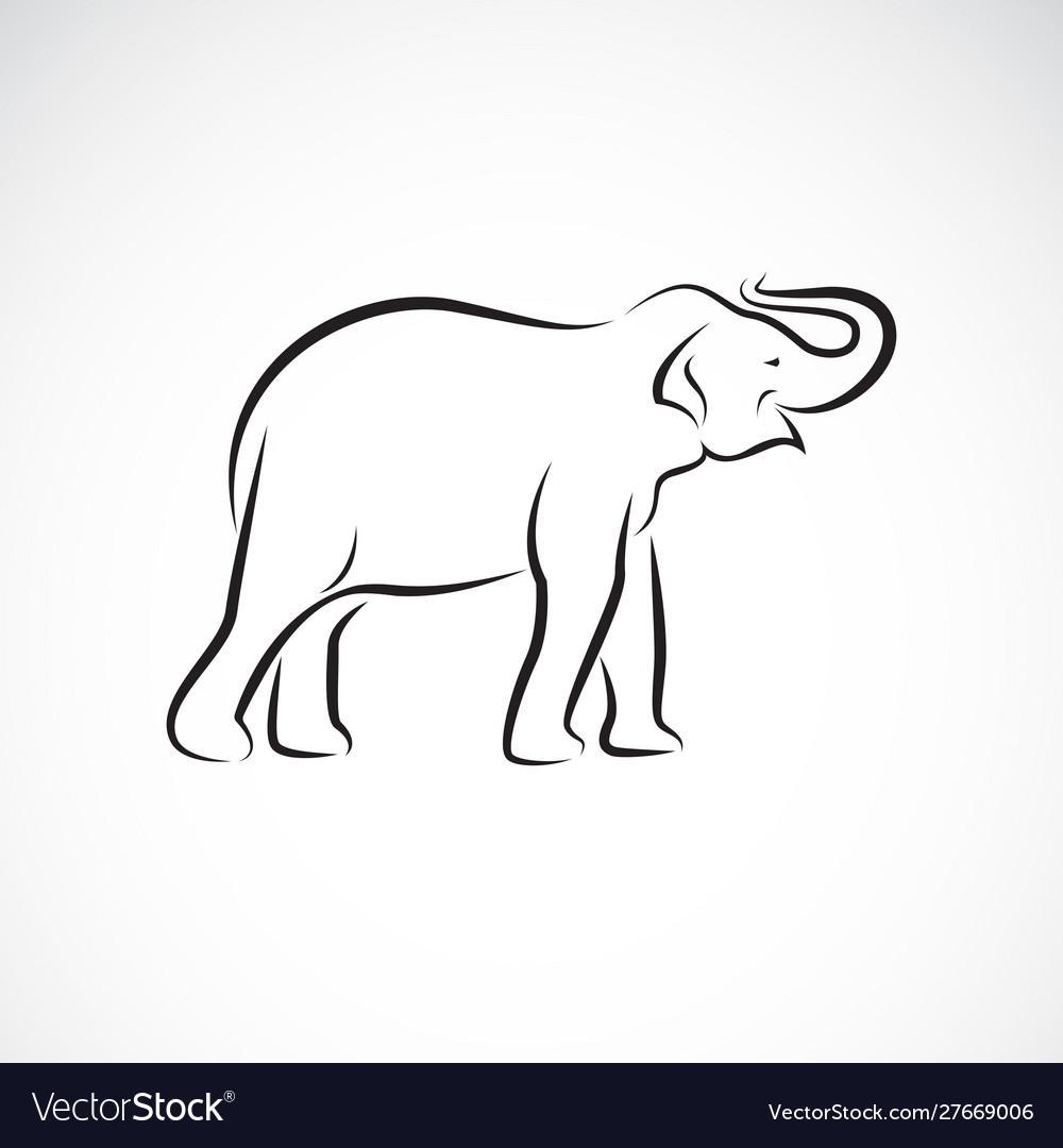 Elephant design on a white background wild