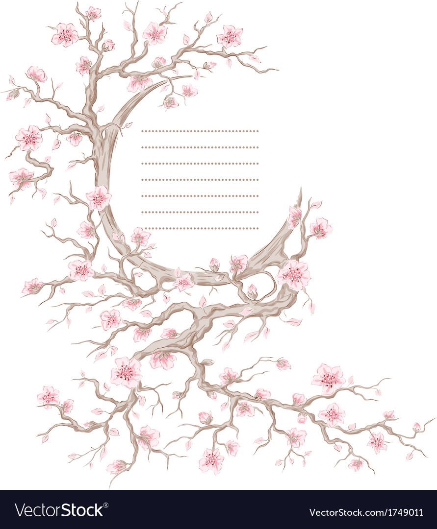 Hand drawn cherry blossom tree vector image