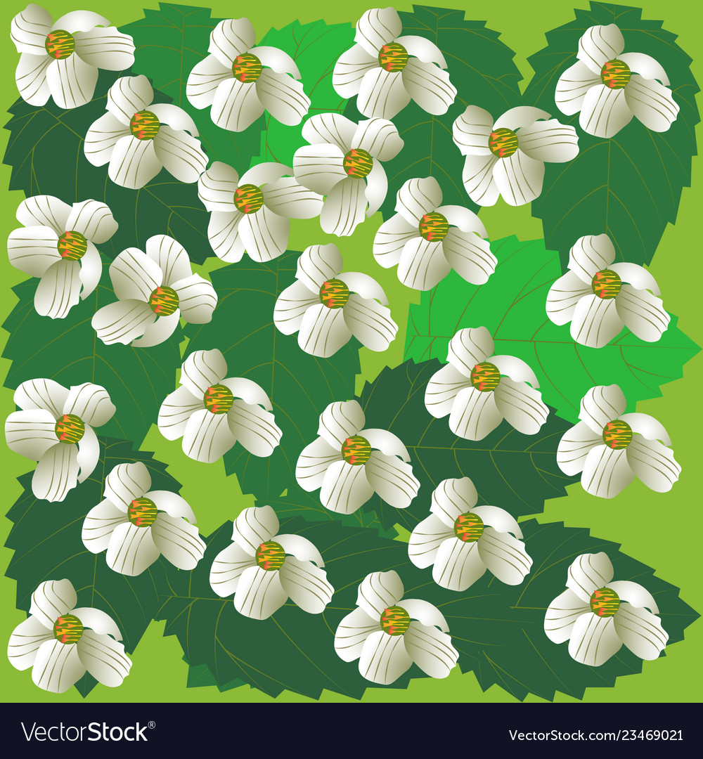 Spring flowers background cherry-tree green