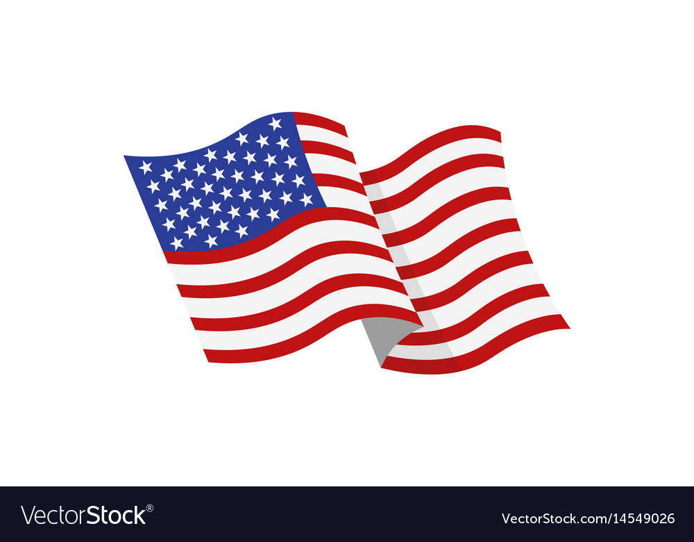 Coloured usa flag vector image