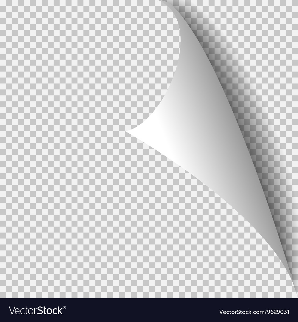Curl corner paper template Transparent grid Vector Image