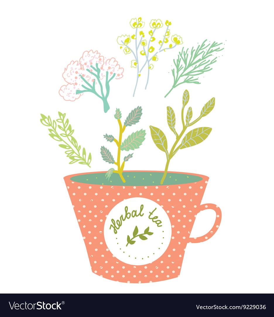 Herbal tea cup - retro style