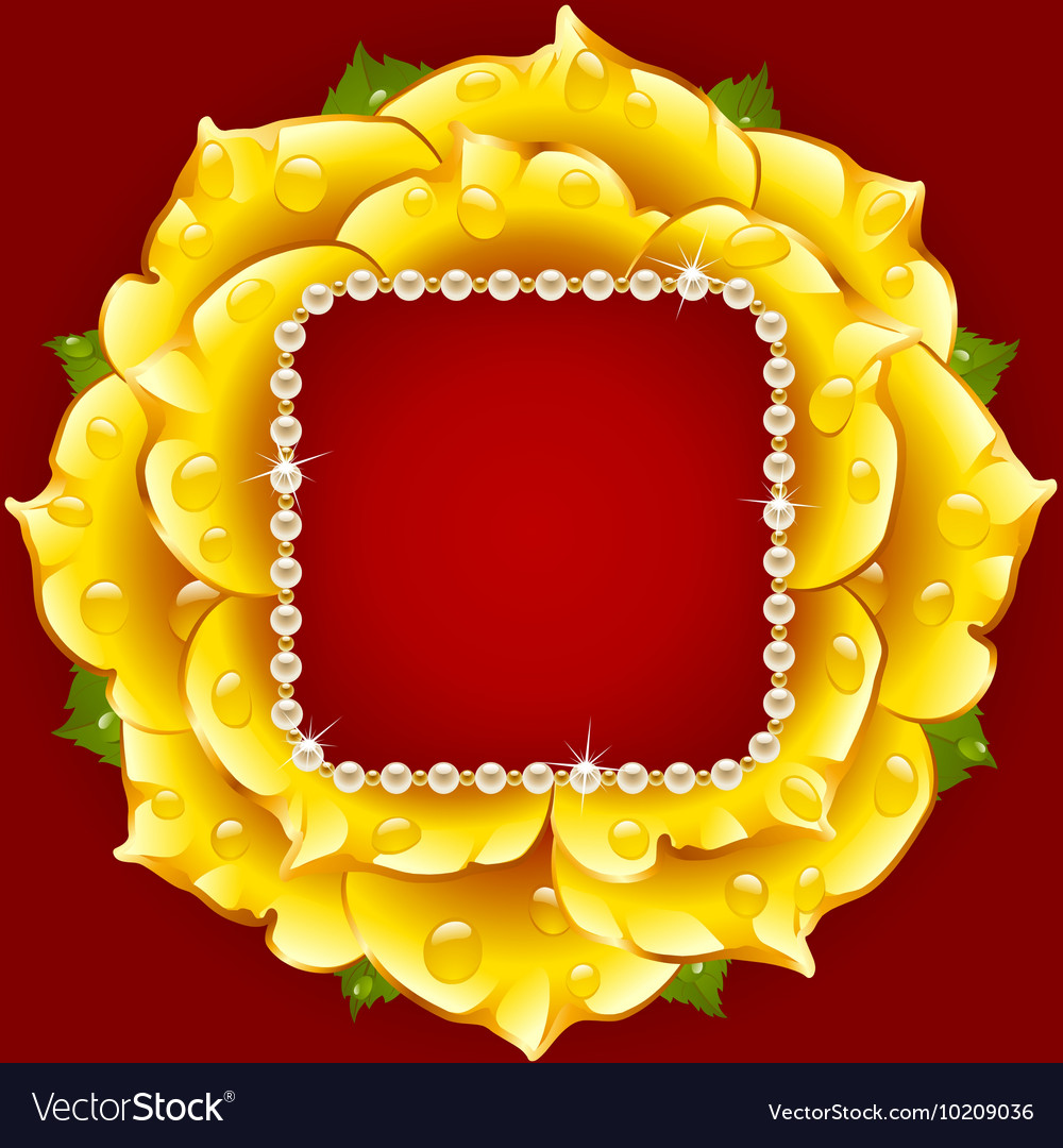 Yellow Rose circle frame vector image