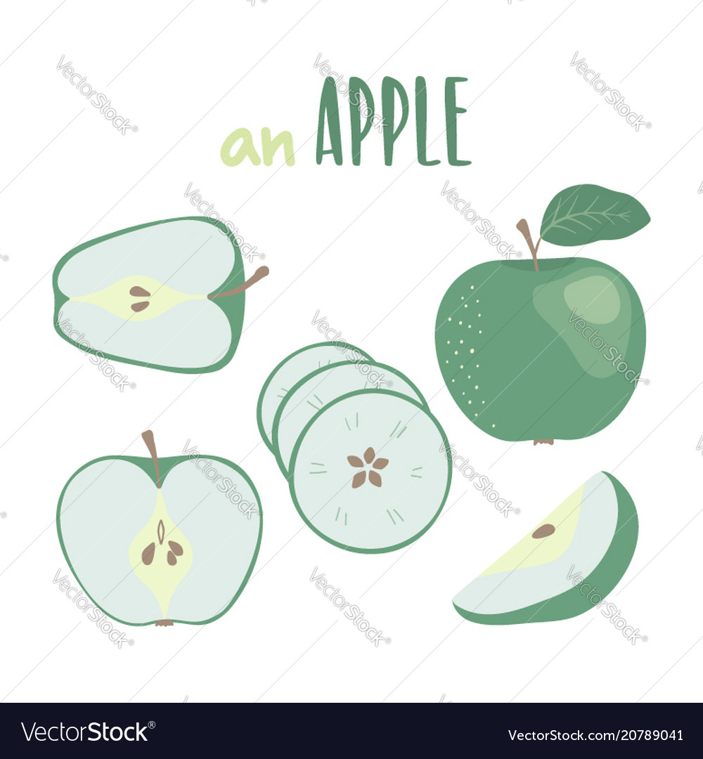 Green apple hand drawn set isolated