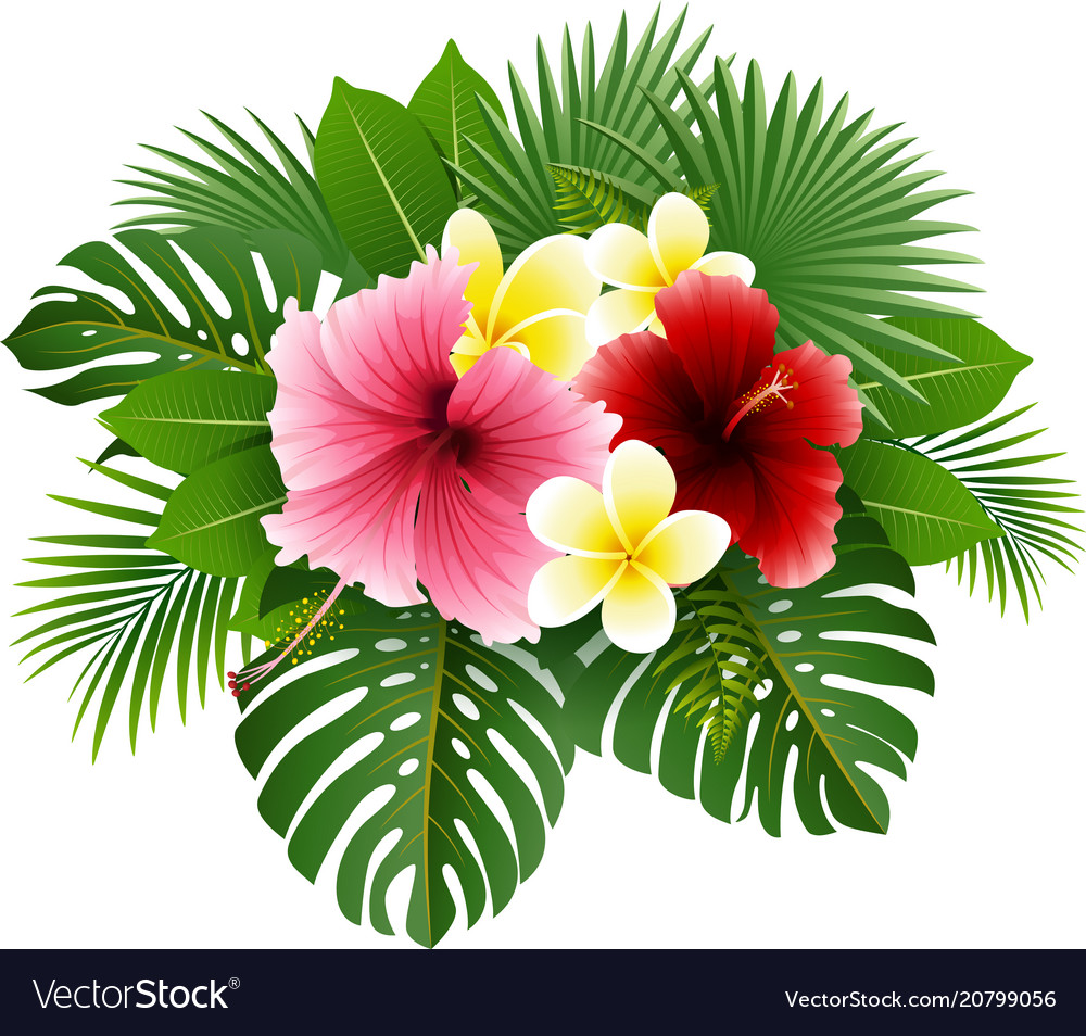 Beautiful flowers and leaves royalty free vector image beautiful flowers and leaves vector image izmirmasajfo