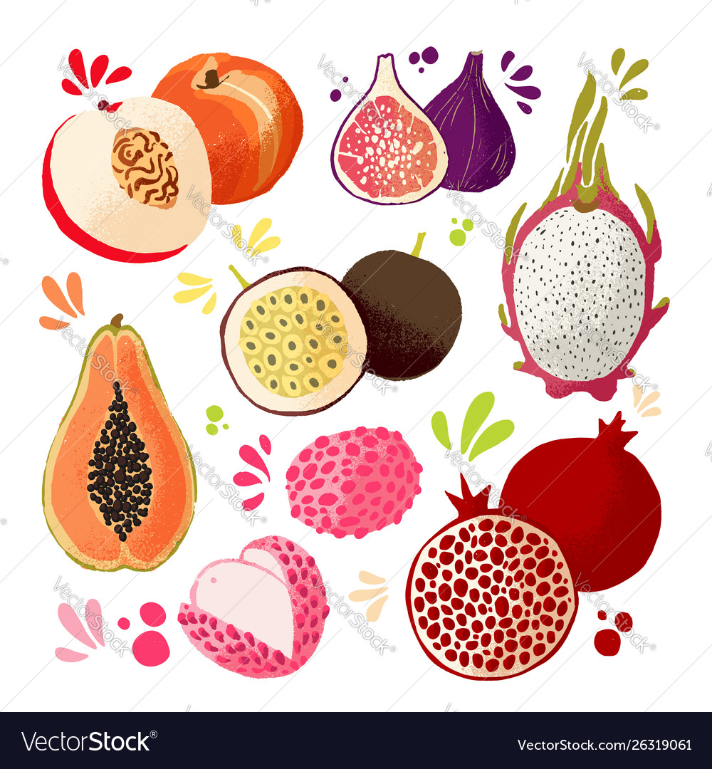 Set colorful hand draw fruits - tropical sweet