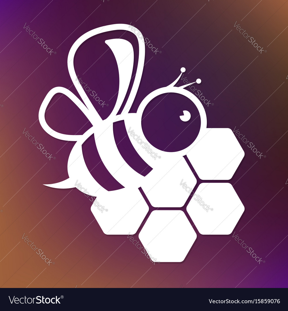 Bee and honeycombs design vector image