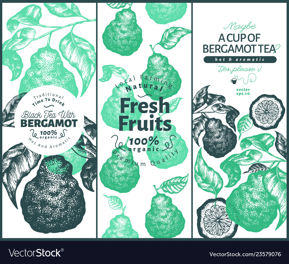 Bergamot design set template kaffir lime frame
