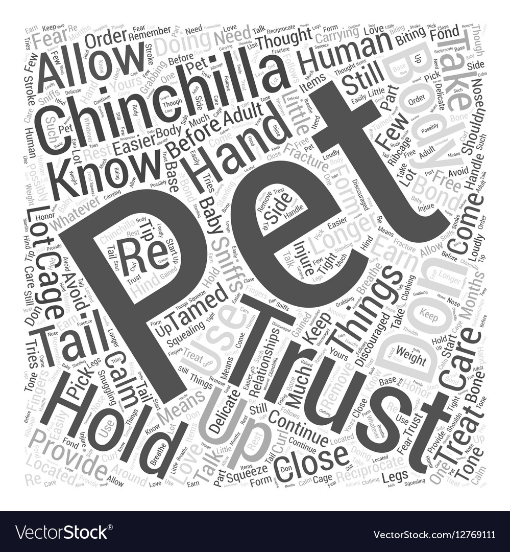 How To Get Your Chinchilla To Trust You Word Cloud vector image