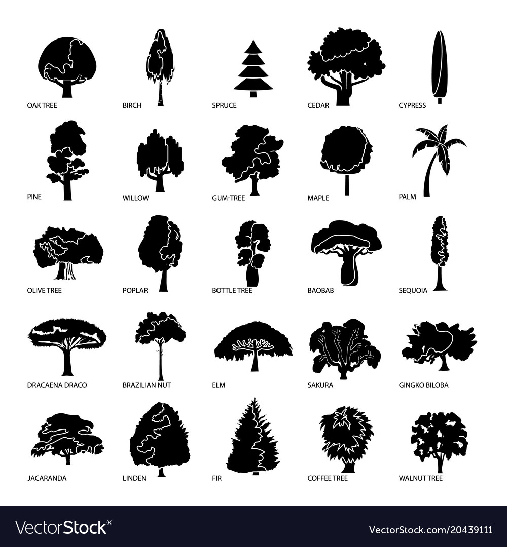 Tree types icons set simple style