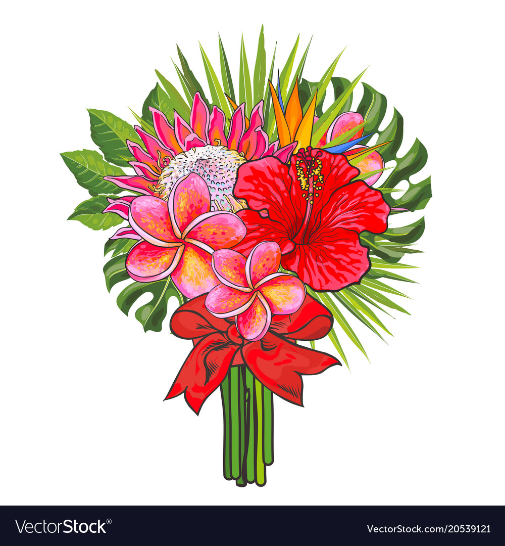 Bouquet of tropical flowers and green leaves with Vector Image