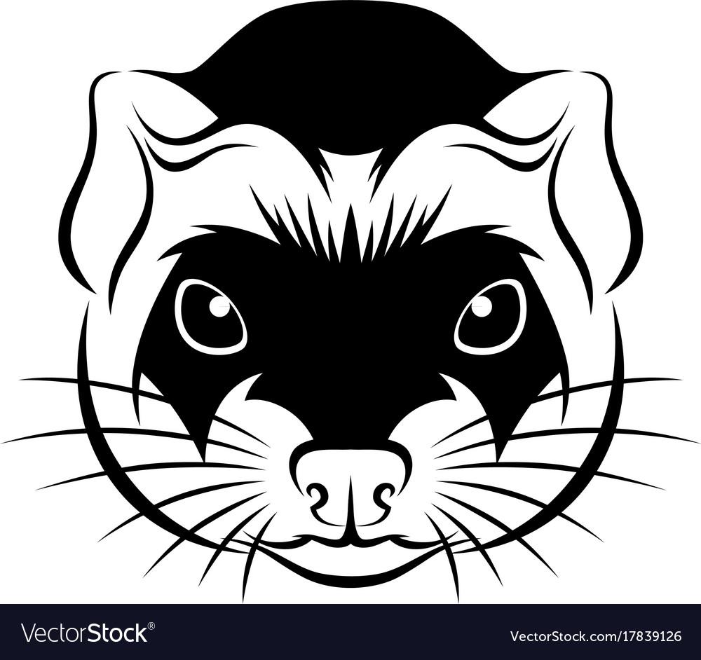 Line ferret head