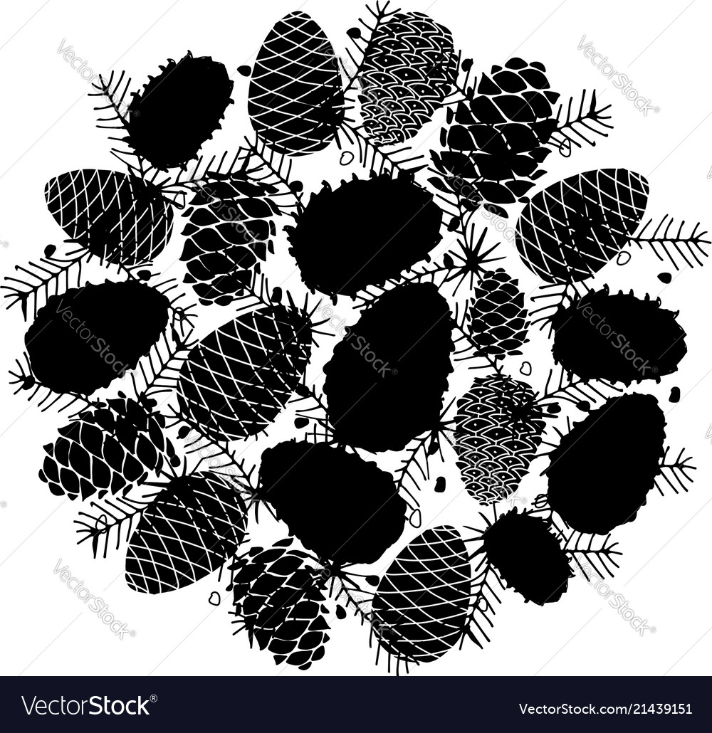 Cedar cone background sketch for your design