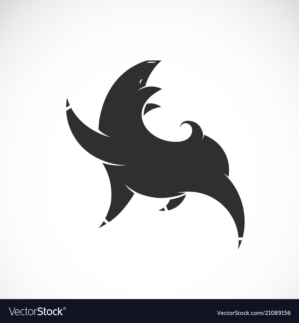 Black pig design on white background farm animal