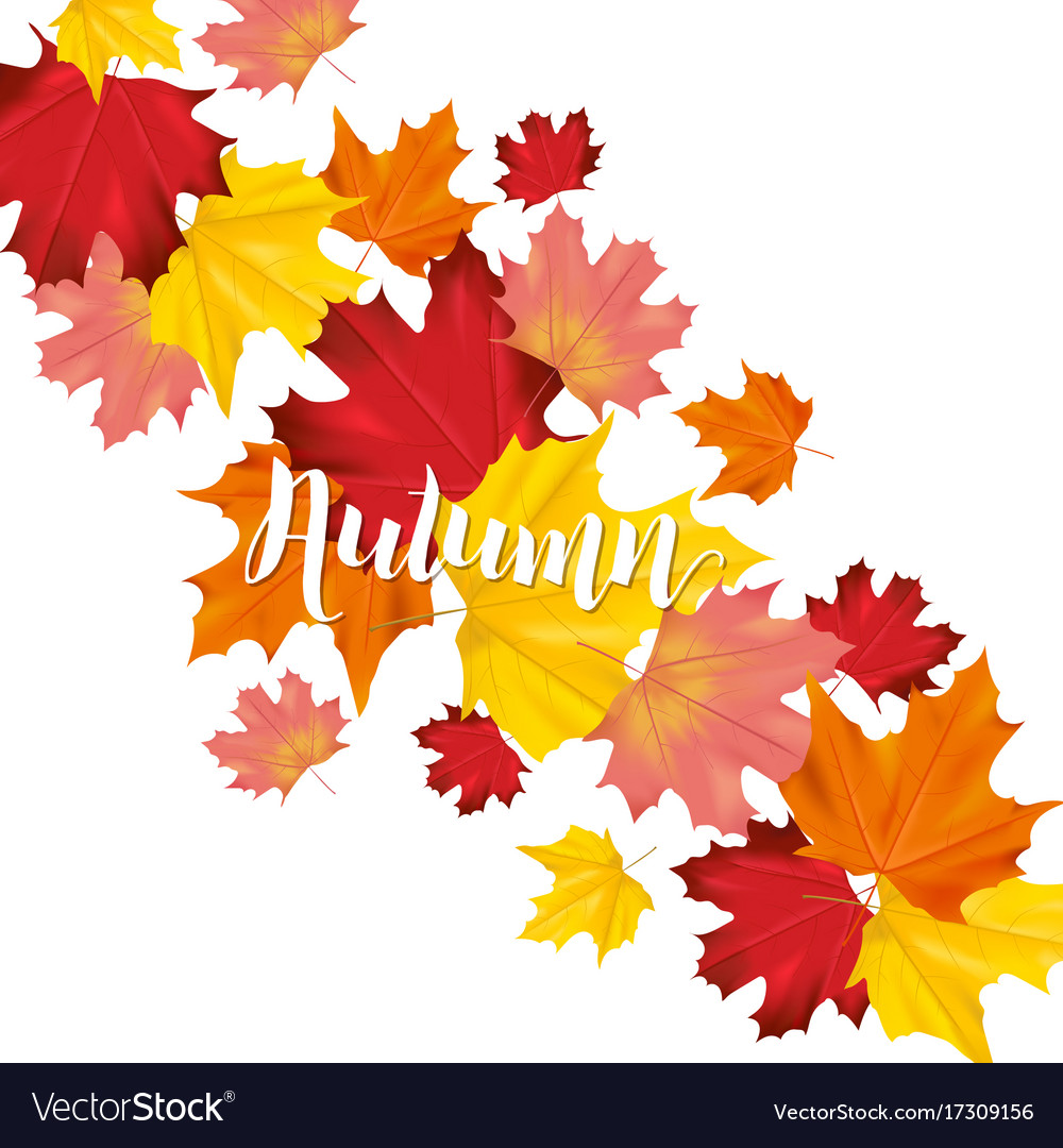 Colorful card or banner with autumn leaves