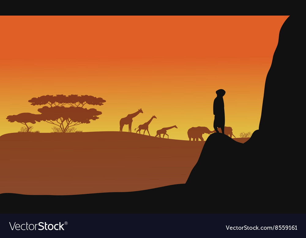 Silhouette of animals africa vector image