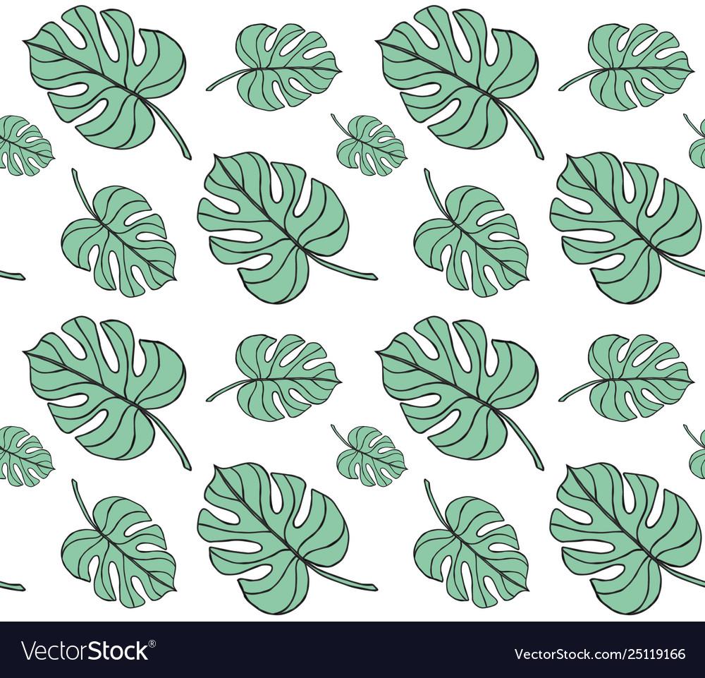 Seamless pattern monstera palm leaves