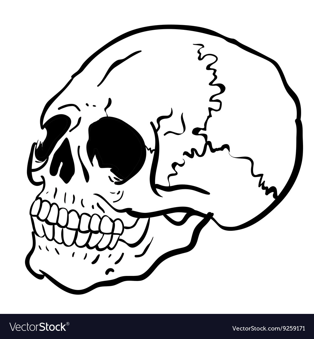 Black and white another skull