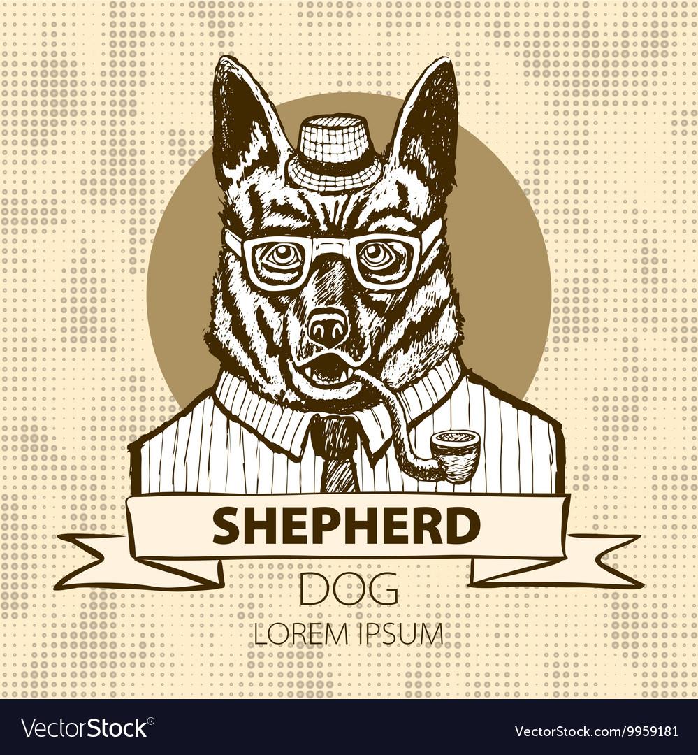 German Shepherd dressed up in suit fashion dog