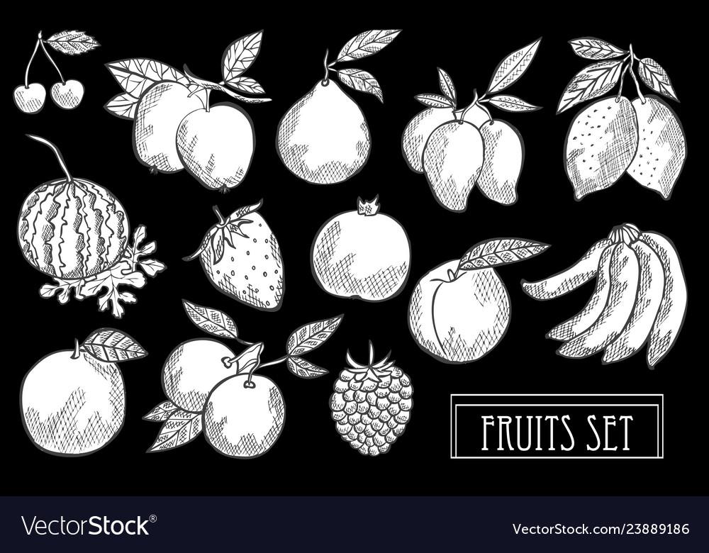 Hand drawn fruits set