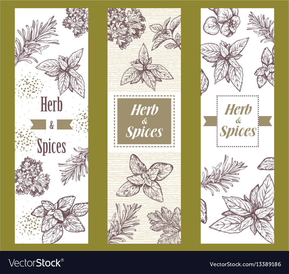 Herbs and spices label engraving