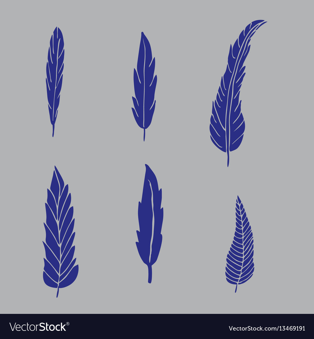 Set of hand drawn blue feathers on grey background