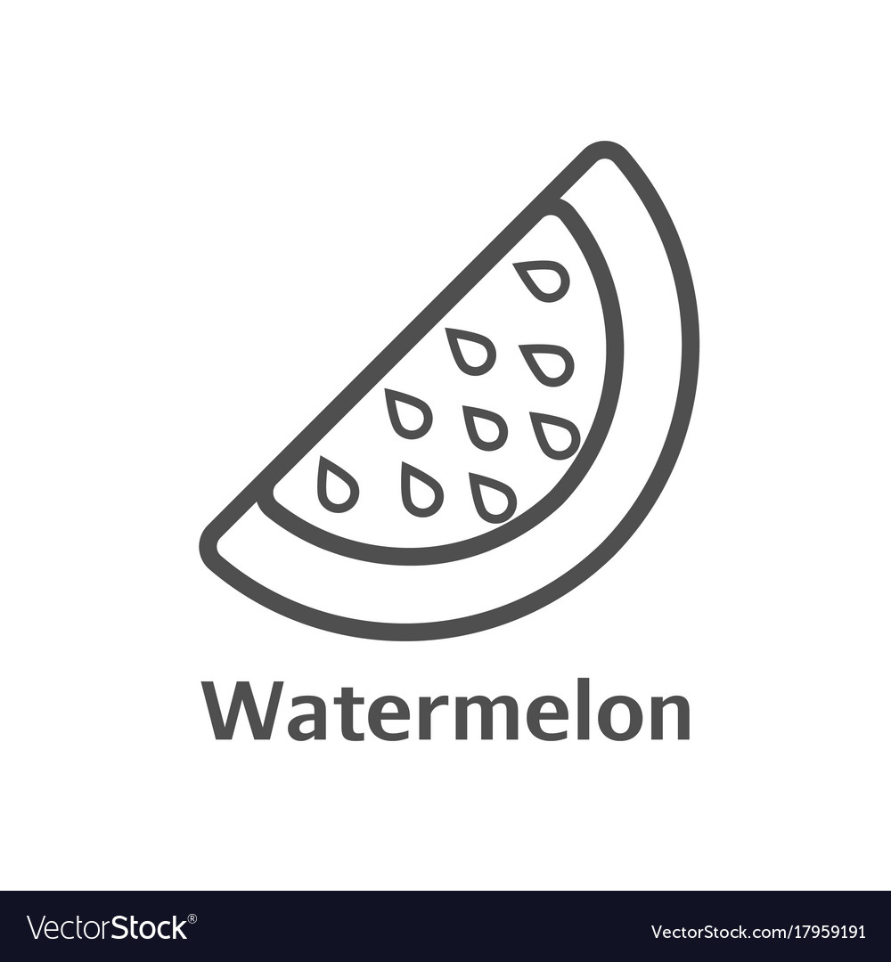 Watermelon thin line icon isolated melon berry