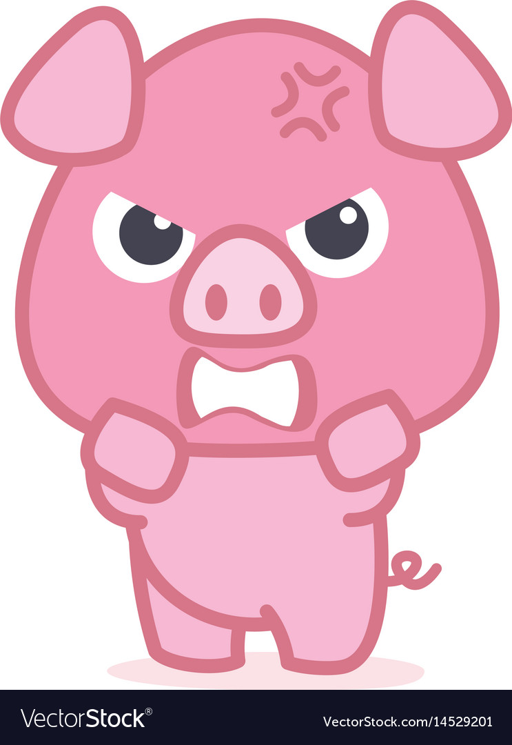 Angry pig cartoon character vector image